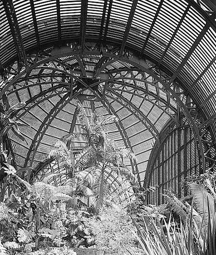 Victorian Greenhouse And The Glass Greenhouse (PICTURES