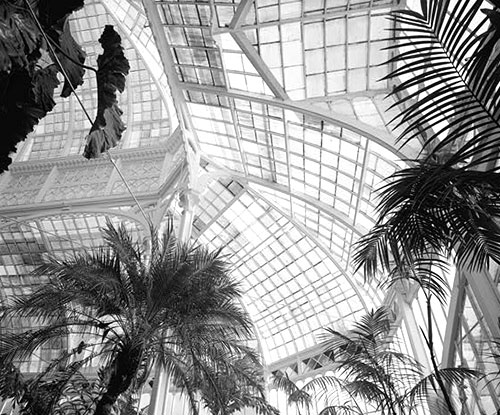 Victorian Greenhouse And The Glass Greenhouse Pictures