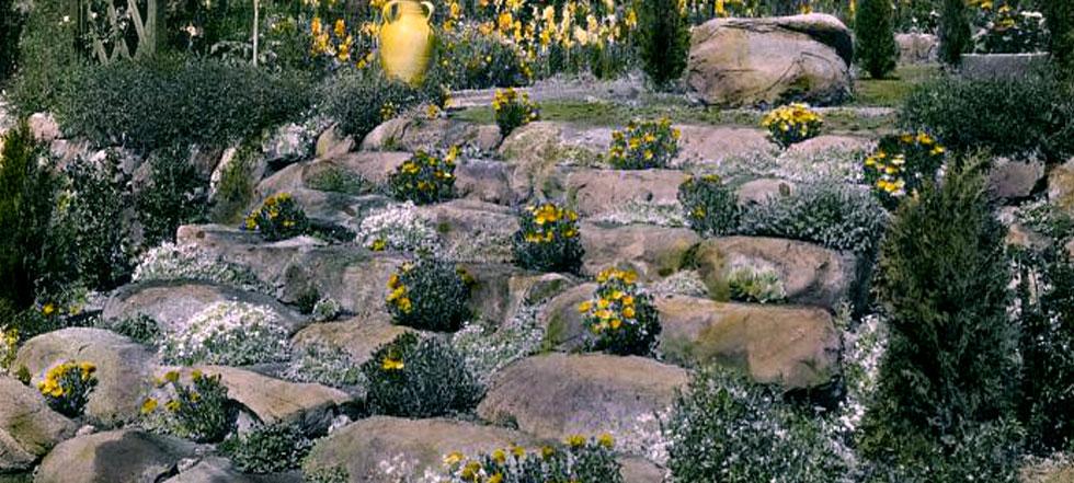 rock garden designs pictures