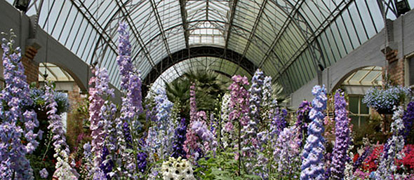 Victorian Greenhouse and the Glass