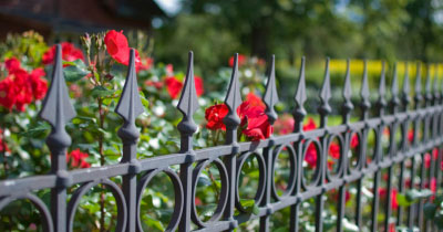 FLOWERS IRON FENCE