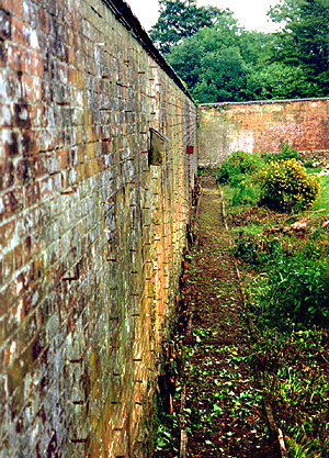 Victorian walled garden pictures of a classic walled garden for Victorian garden walls designs
