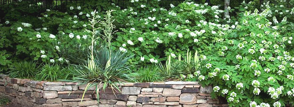 Best Ideas In Landscape Edging Pictures Of Eye Catching