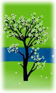 Etonnant Landscape Design Software For Layout Of Backyard Trees.