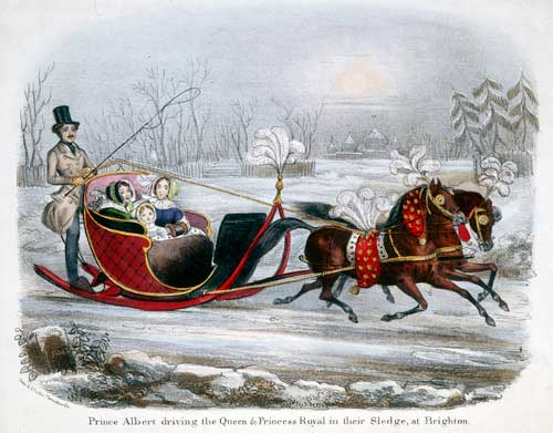 Queen Victoria S Winter Sleigh