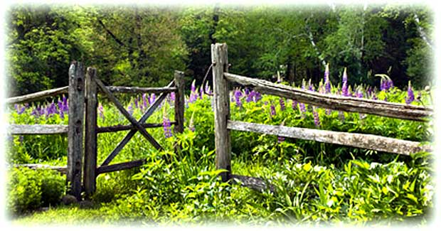 How to Make a Victorian Wooden Gate Victoriana Magazine