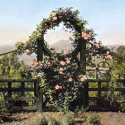 Create A Charming Quaint Wood Garden Gate From These Authentic 1880s  Designs.