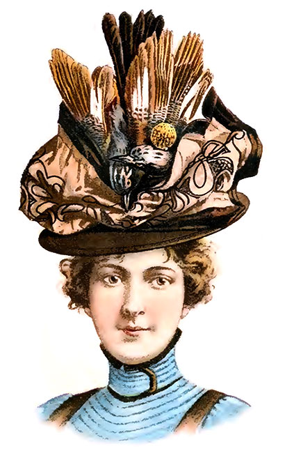 victorian hat Many saw this fashion craze as cruel  nevertheless 5f01f0c78f3