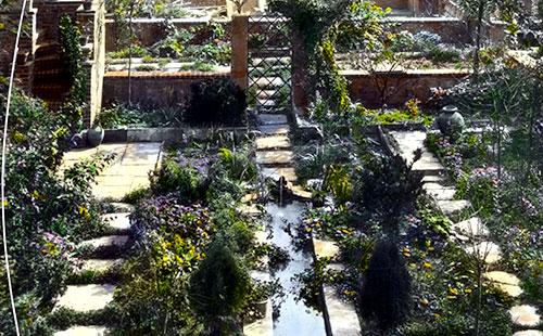 Turtle Bay city garden
