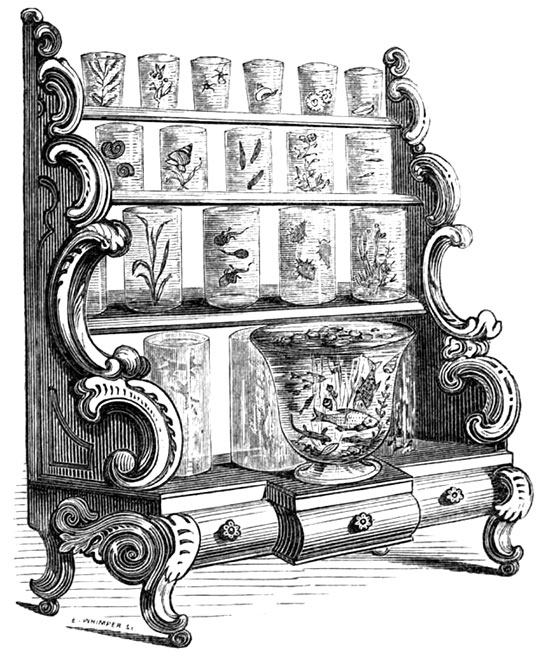 "CABINET AQUARIUM From ""The Book of the Aquarium"" by James Shirley Hibberd, 1860."
