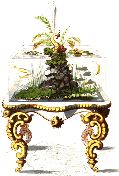 MID-19th CENTURY AQUARIUM Rustic Adornments for Homes of Taste by Shirley Hibberd, 1857.