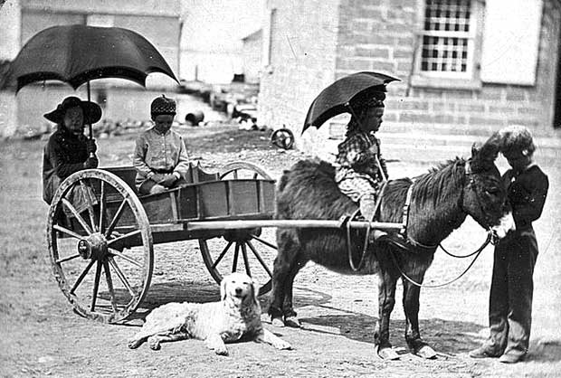 Daguerreotype of children in donkey cart with dog, c1850. [Photo: Library of Congress]